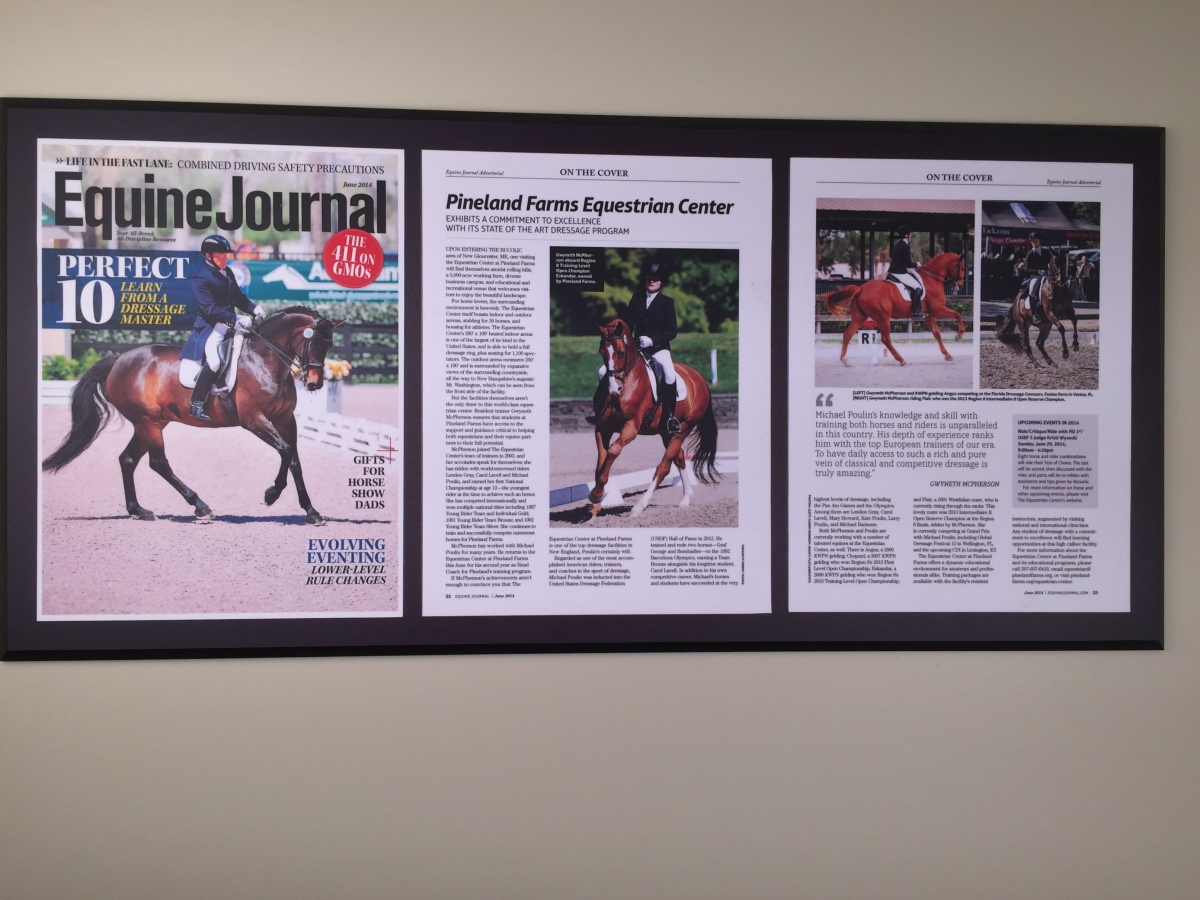 Multiple Mount Equine 3 panels